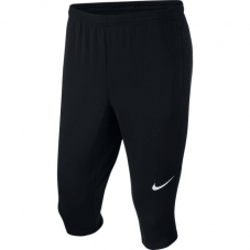 Бриджі для тенувань Nike Academy 18 3/4 Tech Pant