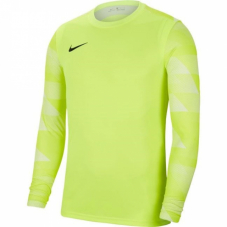 Воротарський реглан Nike Dry Park IV Goalkeeper Jersey Long Sleeve CJ6066-702