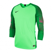 Воротарський реглан Nike Gardien Long Sleeve 898043-398