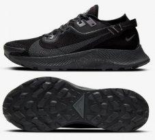 Кросівки Nike Pegasus Trail 2 GORE-TEX CU2016-001