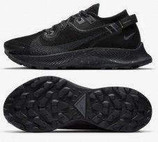 Кросівки Nike Pegasus Trail 2 GORE-TEX CU2018-001
