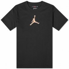 Футболка Air Jordan Perf Logo Tee CZ8087-010