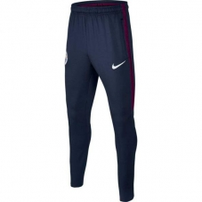 Спортивні штани Nike JR Manchester City Dry SQUAD Pant
