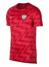 Футболка Nike Dry Poland Squad